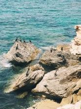 Colonia de Sant Pere