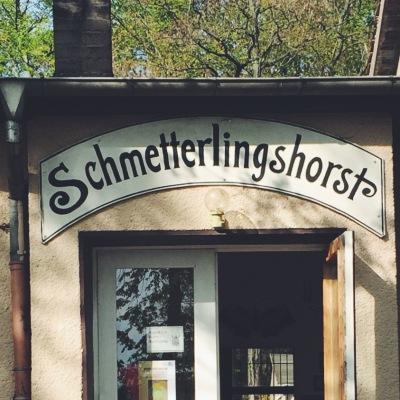 Schmetterlingshorst