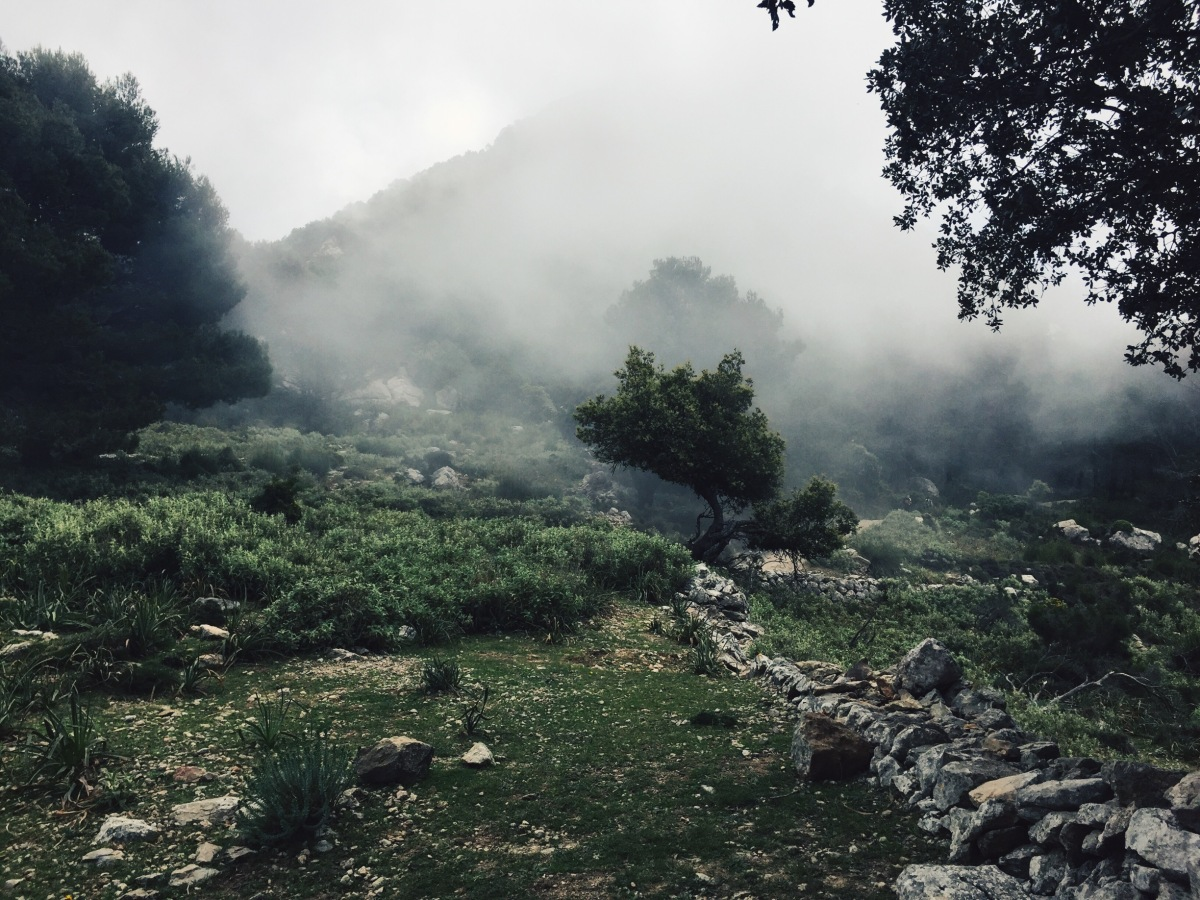 Serra de Tramuntana GR 221: Biniaraix - Tossals Verds