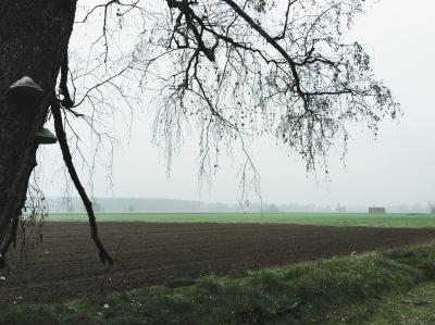 Prenden Bauersee Galgenberg Rühlsdorf Bernsteinsee Kiessee Eiserbuder See Mittelprendener See Brandenburg Wanderung Hike