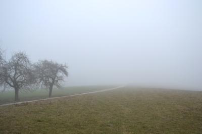 Hollersee