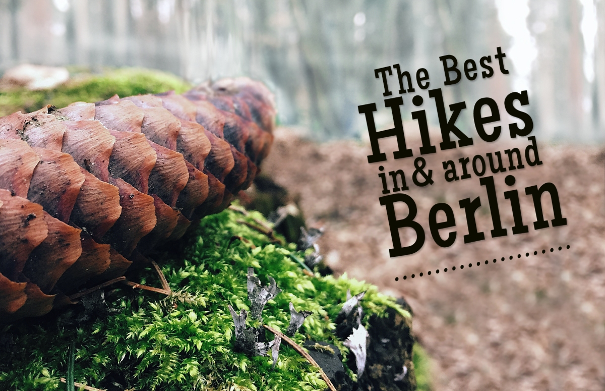 Wanderlust? Need To Escape The City? The Best Hikes in and around Berlin