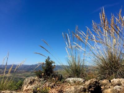 GR 249 Gran Senda de Málaga, Periana – Pulgarin Alto