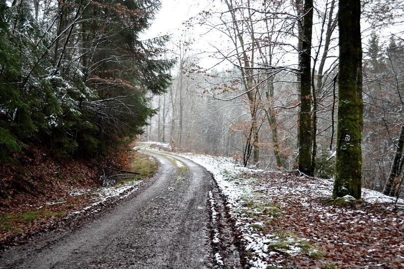 Wandern, hiking, Odenwald, Walldürn, Hainstadt