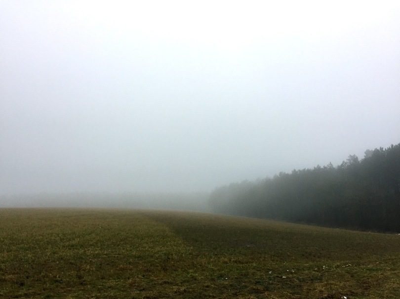 Wandern Odenwald, Bödigheim, Eberstadt