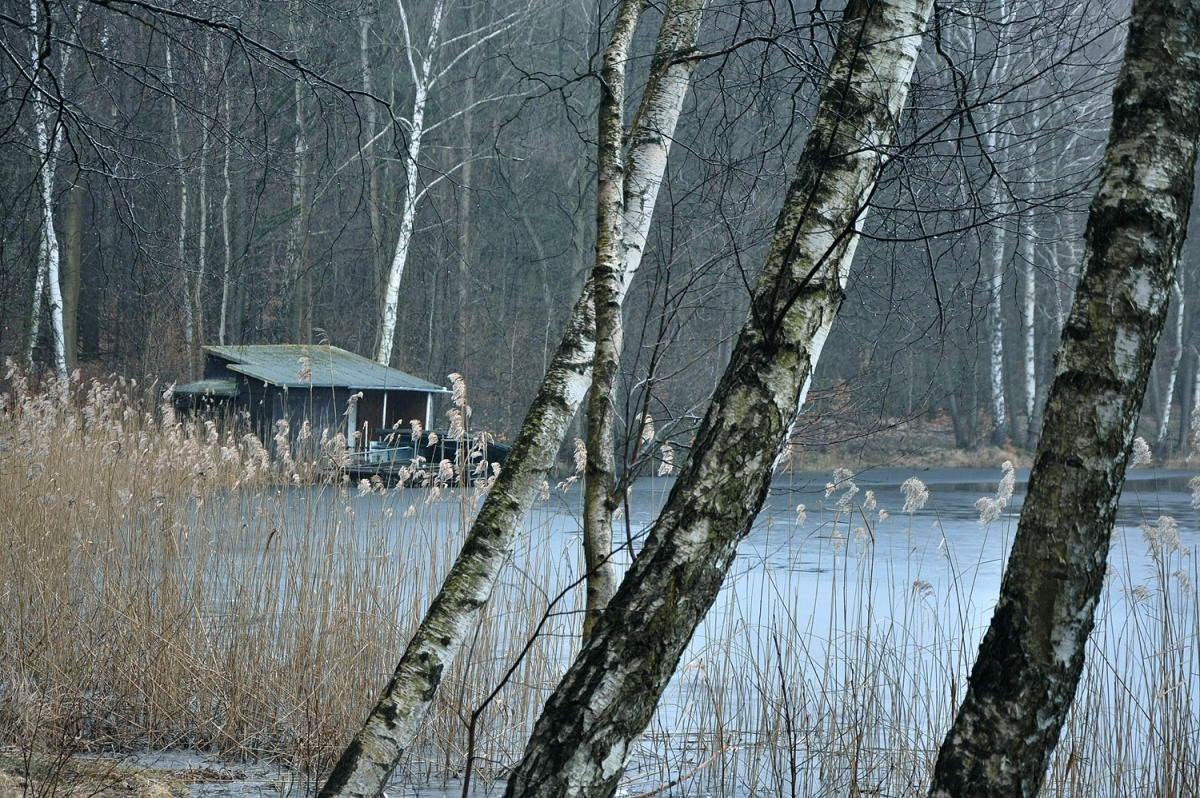 Berlin Day Hike: Frozen Landscapes At Liepnitzsee