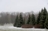 Volkspark Pankow