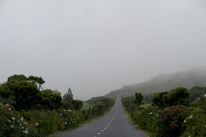 Azores_Pico_Fog_01