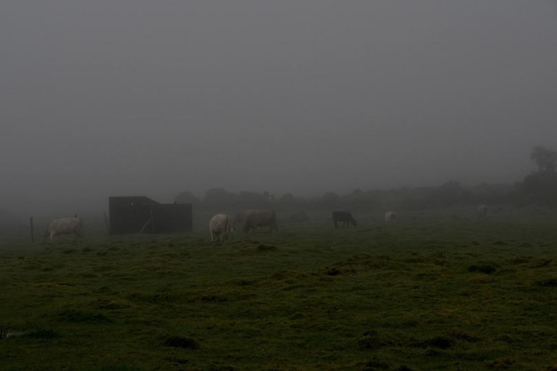 Azores_Pico_Fog_15