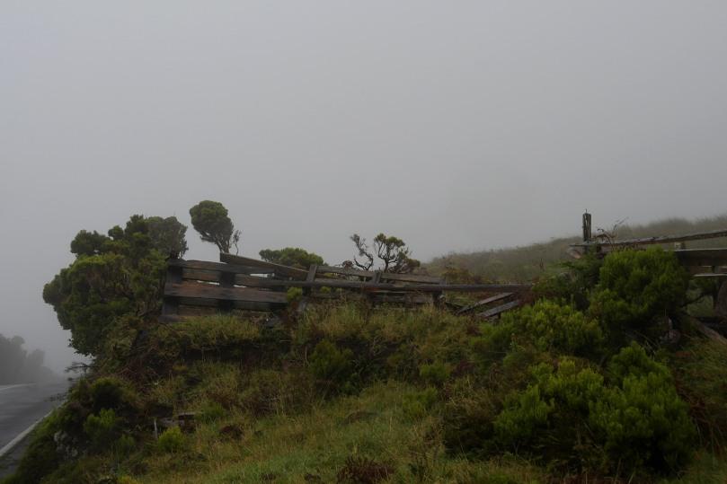 Azores_Pico_Fog_18