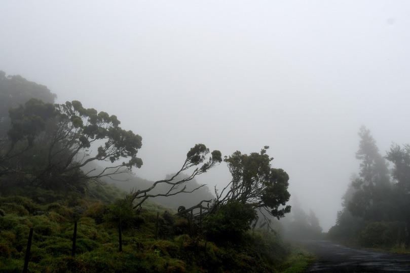 Azores_Pico_Highlands_04