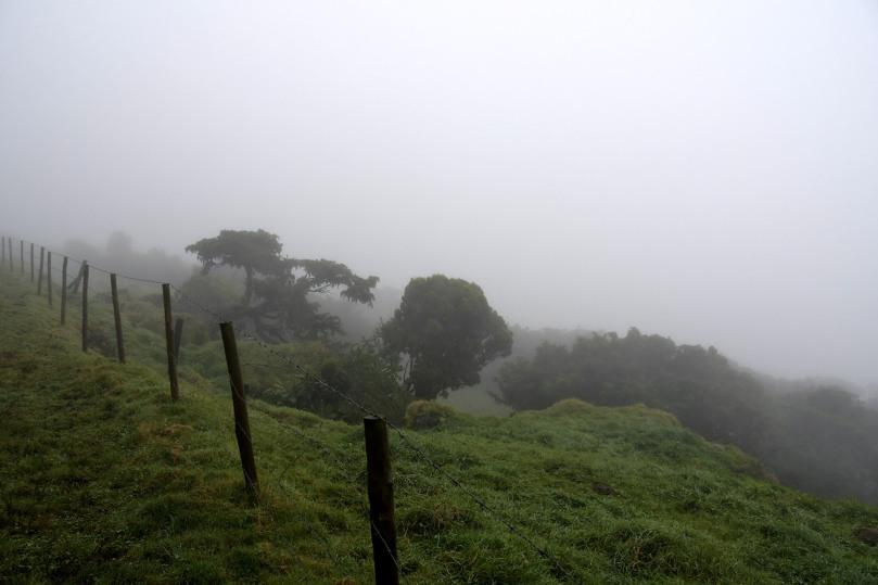 Azores_Pico_Highlands_05