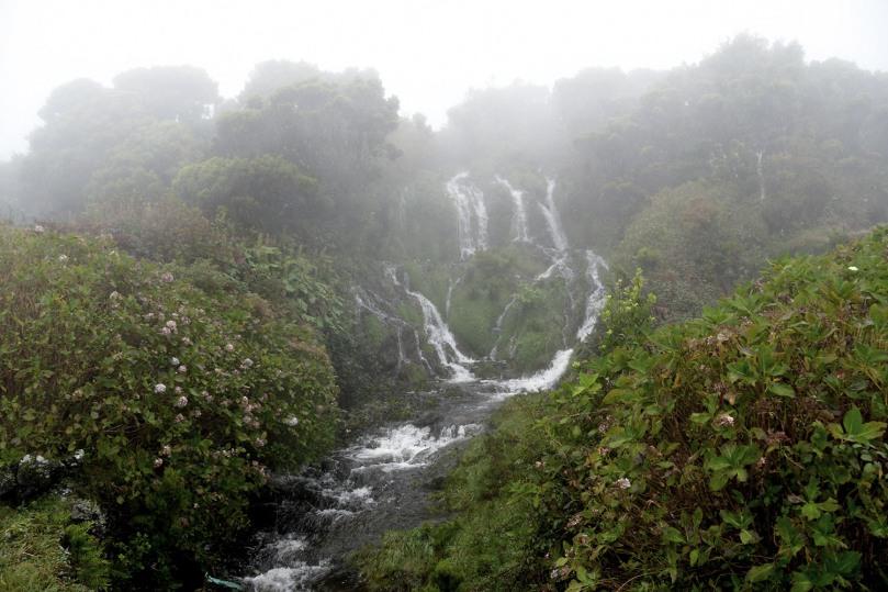 Azores_Pico_Highlands_06