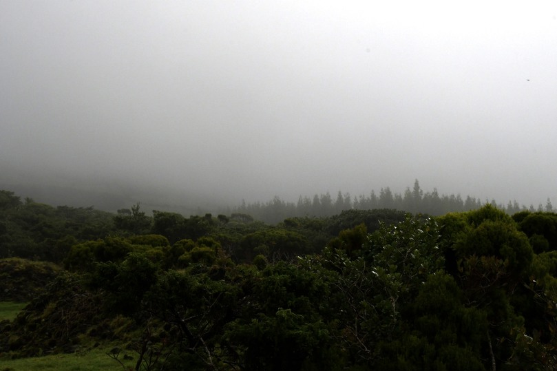 Azores_Pico_Highlands_11