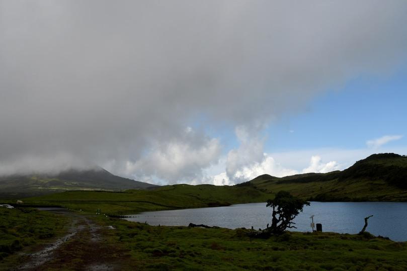 Azores_Pico_Highlands_18