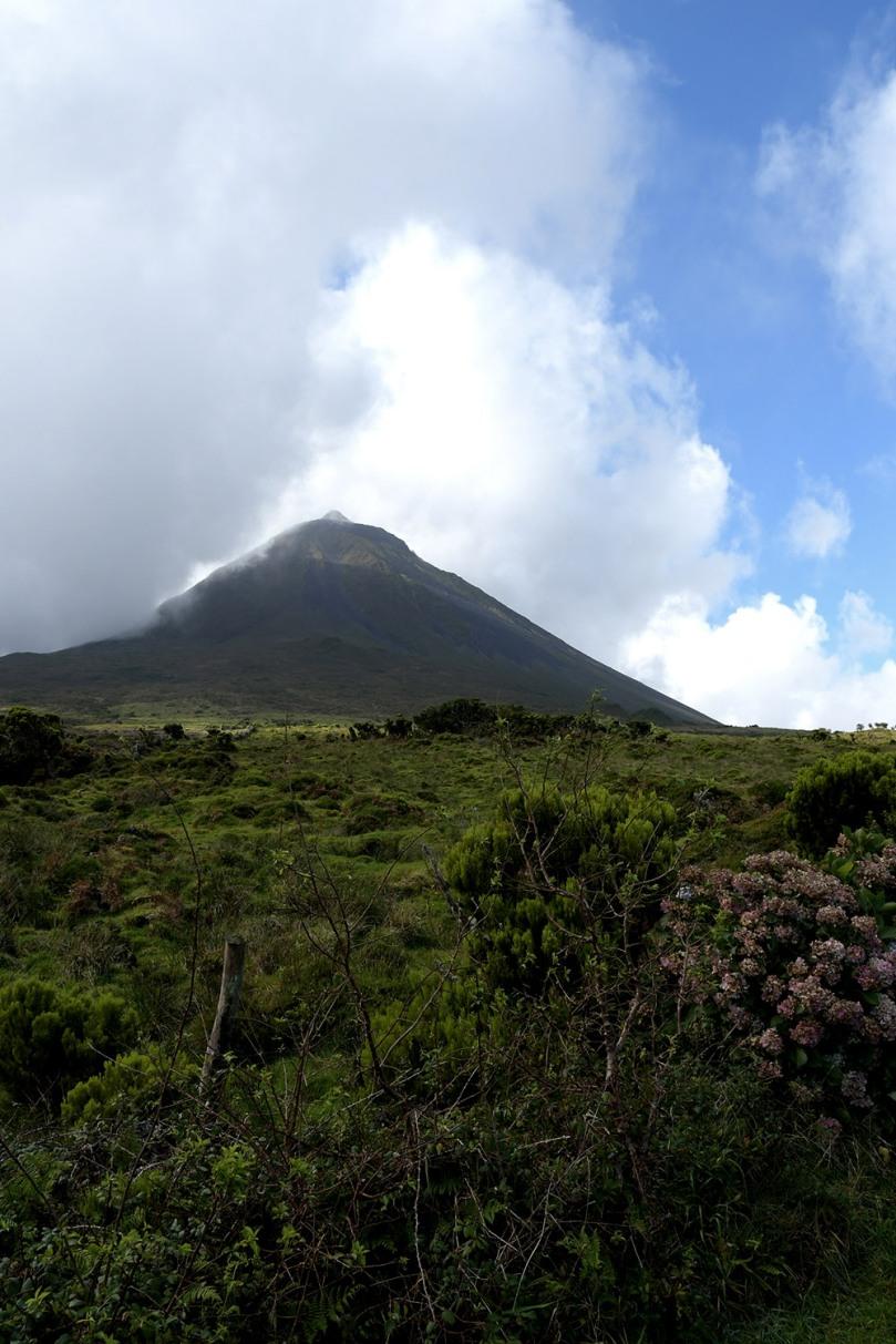 Azores_Pico_Highlands_30