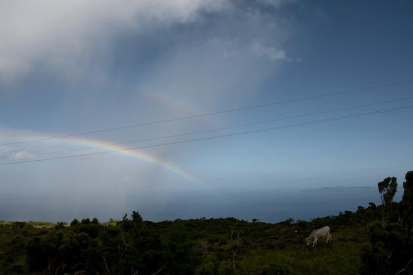 Azores_Pico_Highlands_31