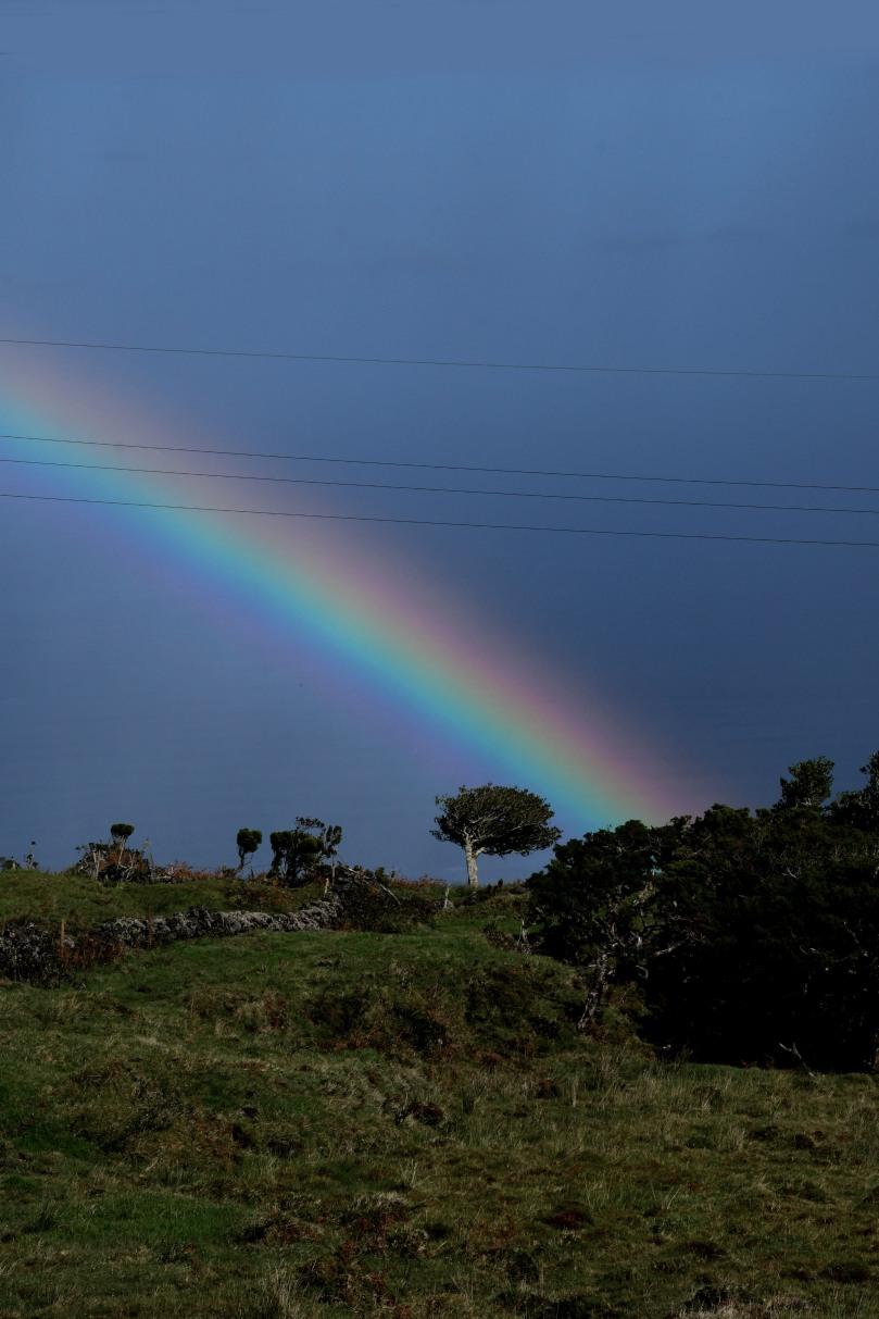 Azores_Pico_Highlands_33